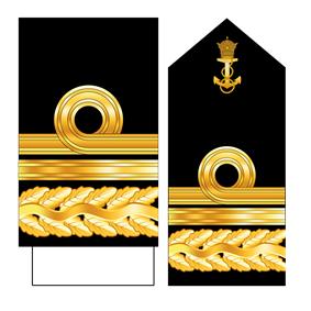 15-IIN-Daryaban-2.png