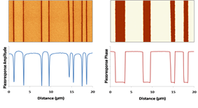 180° ferroelectric domains as imaged by PFM