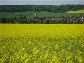 Thorigny-sur-Oreuse in spring colours