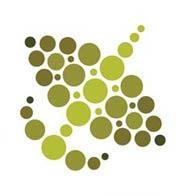2013 Global Policy Forum logo