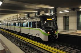 Black & White Train with green stripe