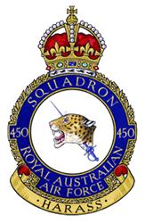 Royal Australian Air Force crest depicting a jaguar's head pierced by a rapier; the motto beneath reads