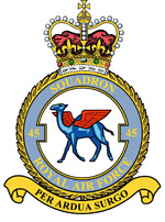45 Squadron badge
