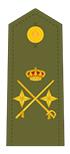 General de División