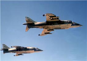 Two Harriers flying