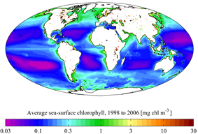 A map of mean surface chlorophyll for the period 1998-2006. NASA SeaWiFS.