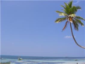 A beach at Kavaratti