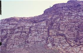 This rock wall shows dark veins of mobilized and precipitated iron within kaolinized basalt in Hungen, Vogelsberg area, Germany.