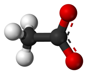 Ball-and-stick model of the acetate anion