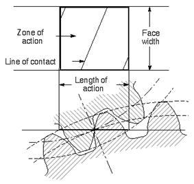 Action zone.jpg
