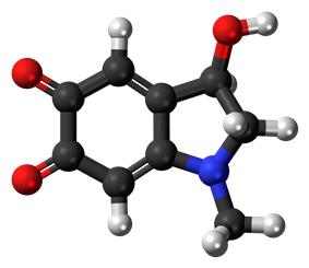 Ball-and-stick model of the adrenochrome molecule