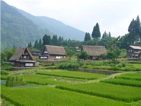 Wooden thatched houses and rice field in a mountainous landscape.