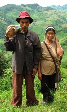 man and woman in northern Thailand – husband carries stem of banana-plant, which will be fed to their pigs