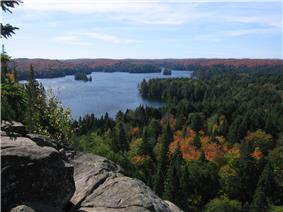 View from the Cache Lake lookout in Algonquin Park