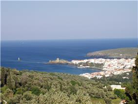 Andros town