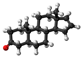 Ball-and-stick model of the androstenone molecule