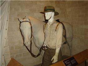 A display in a museum of a mannequin dressed as a soldier leading a horse