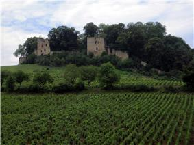 The château d'Arlay