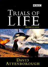 The Trials of Life DVD cover