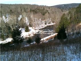 Winter forest vista with river