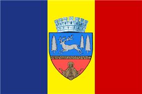 Flag of Bacău