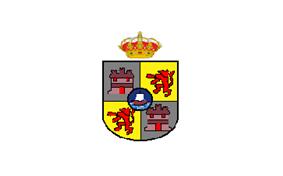 Flag of Concepción