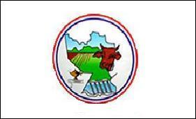 Flag of Misiones Department