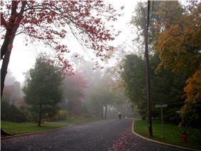 Baxter Estates in Fall 5.jpg
