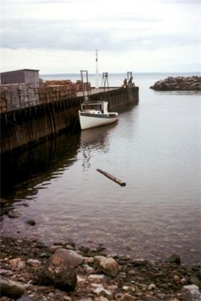 Photo of boat in water next to a dock
