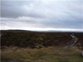 Dark coloured moorland stretching into the distance with grass in the foreground