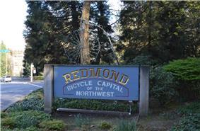 Skyline of Redmond, Washington