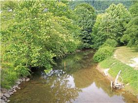 The Birch River, with trees to the left and a clearing to the right