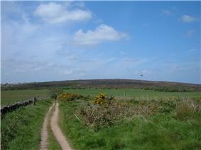 Tyre tracks run through flat grassland toward a large mound on the distant horizon.