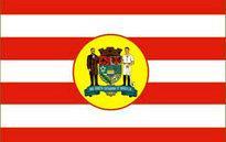 Flag of Blumenau