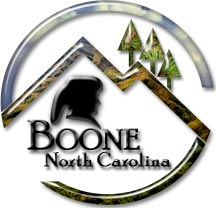 Official logo of Boone