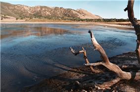 Borax Lake Site