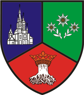 Coat of arms of Brașov County