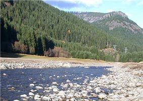 The Breitenbush River.