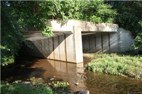 Bridge in Franconia Township