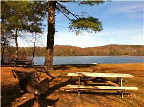 Picnic table with pond