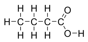 Flat structure of butyric acid