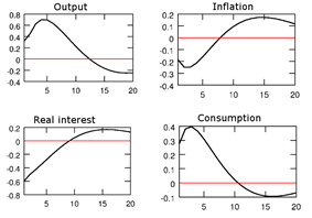 Chart shows an initial positive response of consumption and output followed by a negative response several years later. Real interest rates and inflation have initial negative responses followed by a slight positive response.
