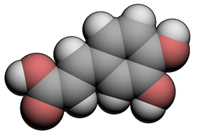 3D space filling model of caffeic acid