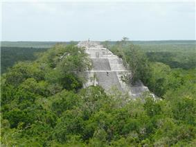 Pyramid with a staircase among a tropical forest.