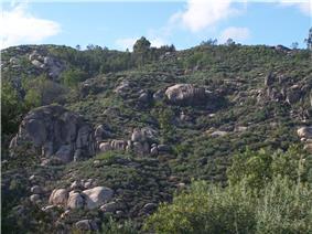 The terrain around Caldas-da-Cavaca, showing the rugged rock-outcroppings near the train terminal