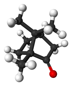 Ball and stick model of camphor ((1R,4R)-1-methyl,heptan)