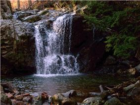Photo of Cascade Falls Trail in State Park