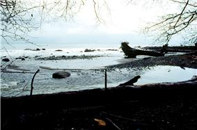 The mouth of the Clallam River is located in Clallam Bay County Park.