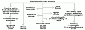 The effects of high inspired oxygen pressure: (1) chemical toxicity, pulmonary damage, hypoxemia; (2) retinal damage, erythrocyte hemolysis, liver damage, heart damage, endocrine effects, kidney damage, destruction of any cell; (3) toxic effects on central nervous system, twitching, convulsions, death.