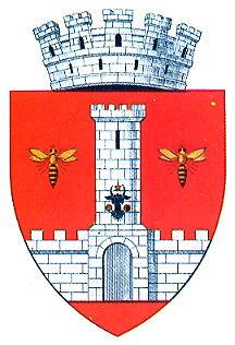 Coat of arms of Vaslui